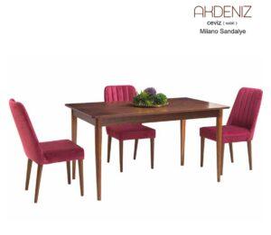 Mutfak Masaları 172